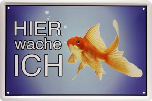 "Blechschild "" Hier wache ich - Goldfisch """