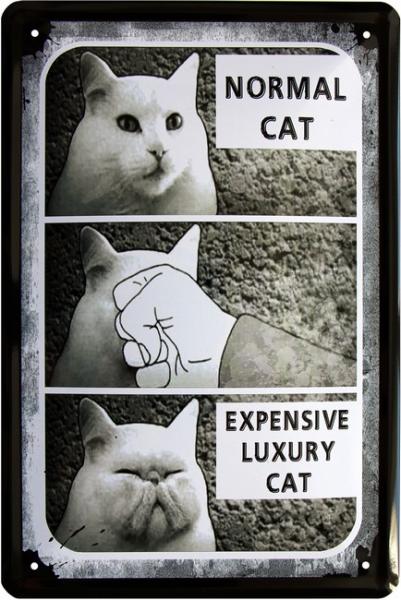 """Blechschild """" Normale Katze - Rassekatze """""""