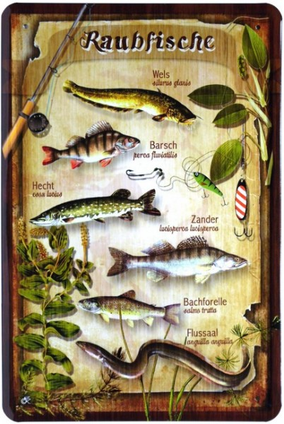"""Blechschild """"Raubfische Fische"""""""