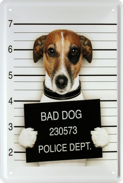 "Blechschild "" Bad Dog Hund Funny Witzig """