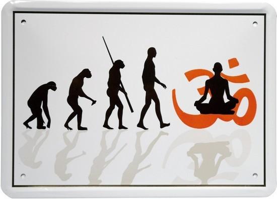 """Blechschild 15 x 21 cm """"Evolution Buddhist"""""""