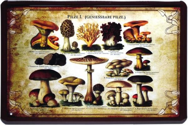 """Blechschild """"Speisepilze genießbare Pilze """""""