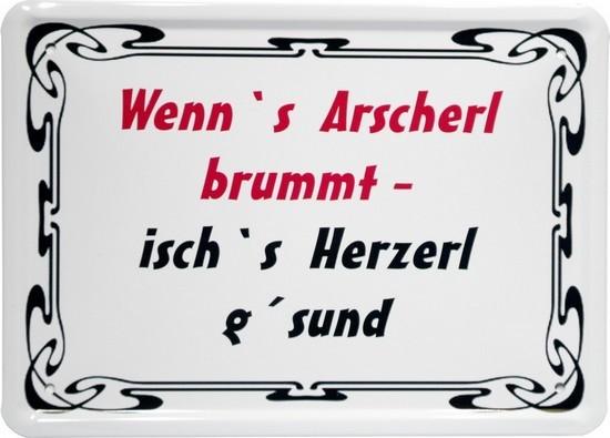 """Blechschild 15 x 21 cm """"Wenns Arscherl brummt..."""""""