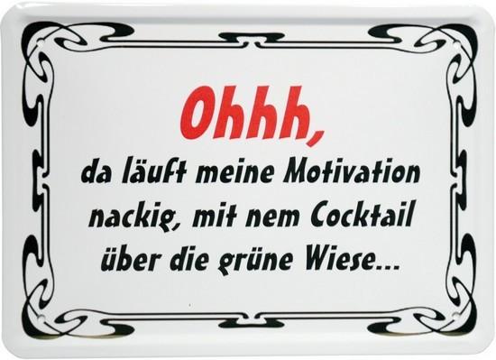 """Blechschild 15 x 21 cm """"Oh, da läuft meine Motivation..."""""""