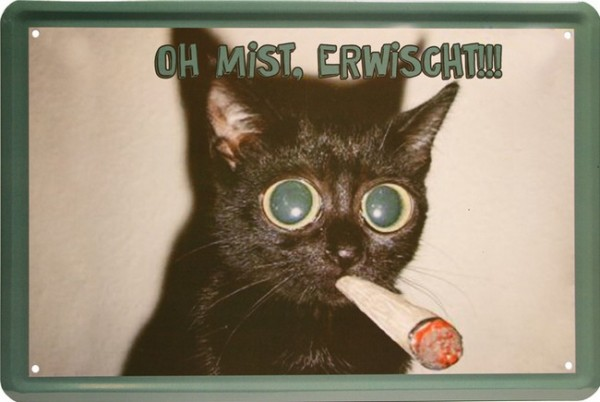 "Blechschild Fun Katze "" Oh Mist, erwischt """