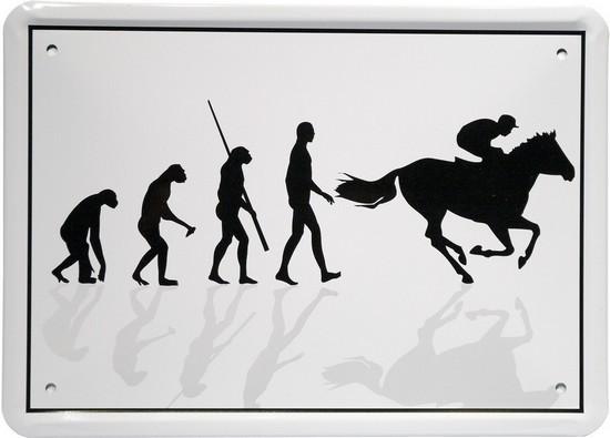 """Blechschild 15 x 21 cm """"Evolution Reiter"""""""