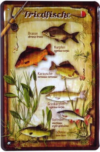 "Blechschild ""Friedfische Fische """